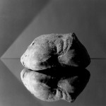 Robert Mapplethorpe, Bread, 1979, silver gelatin, image 34 x 34 cm (frame 66 x 68 cm), edition 3 of 10