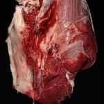 Dominik Schulthess, Flesh 4, 2008, pigment print, image 24 x 30 cm, frame 25 x 31 cm 2/5